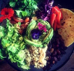 Vegan Mexican Bowl