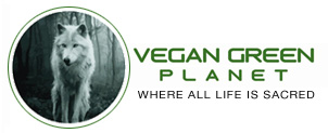 Vegan Green Planet